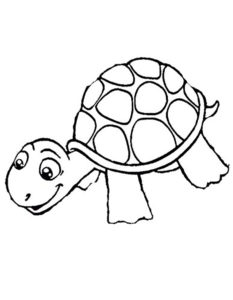 Черепаха картинки раскраски (21)
