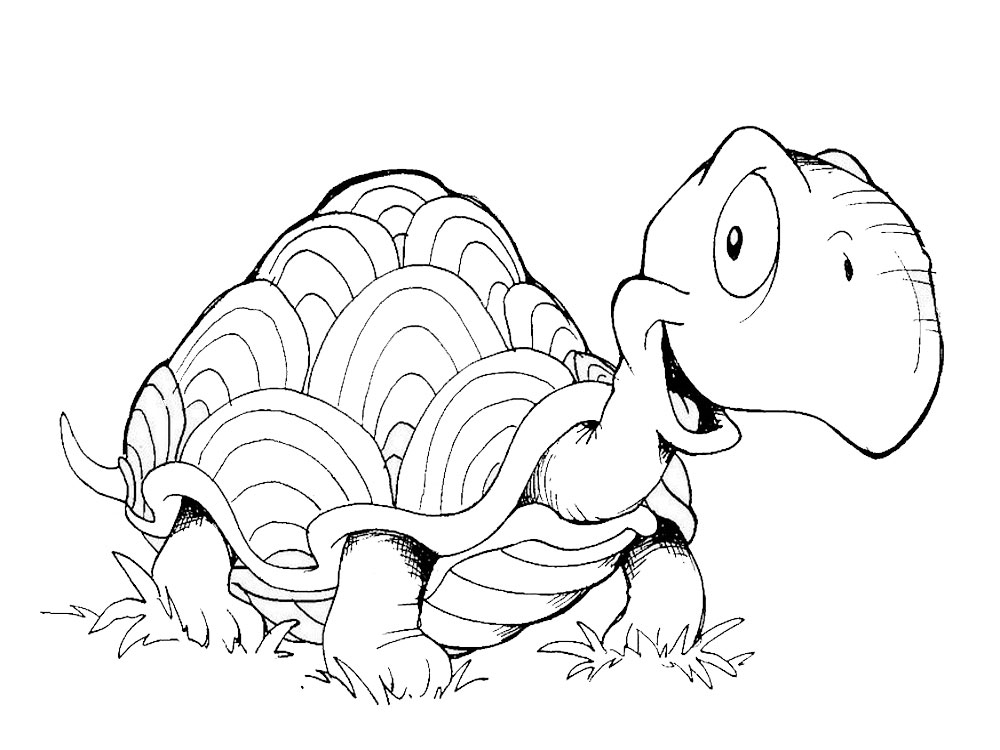 -картинки-раскраски-29 Черепаха картинки раскраски (29)