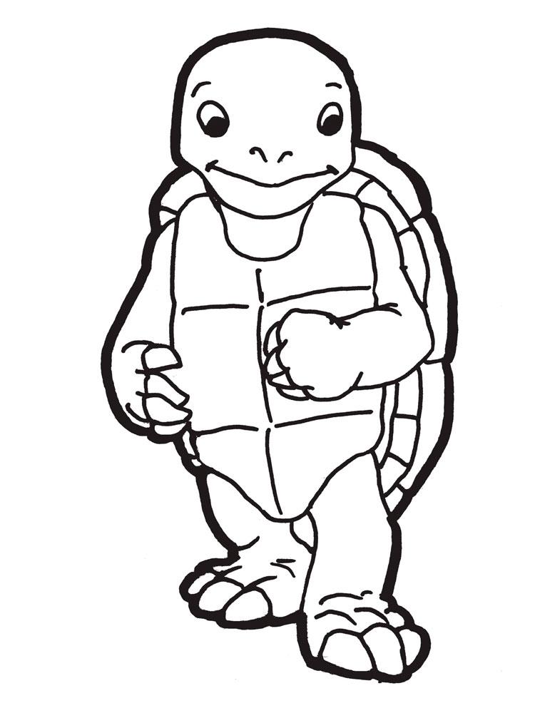 Черепаха картинки раскраски (30)