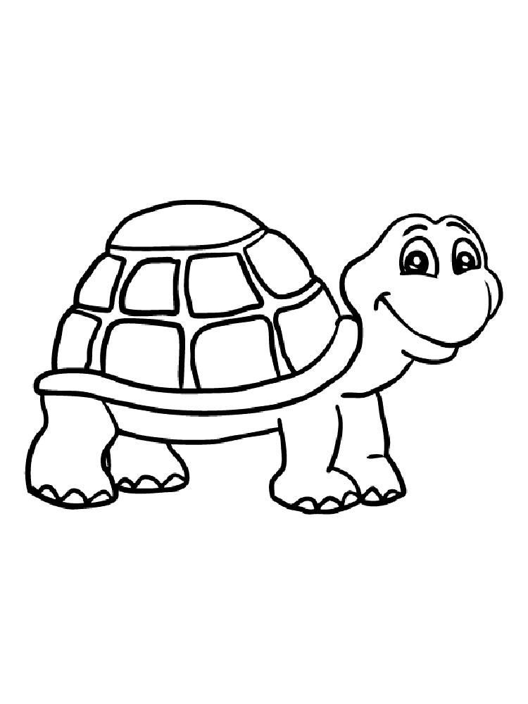 Черепаха картинки раскраски (31)