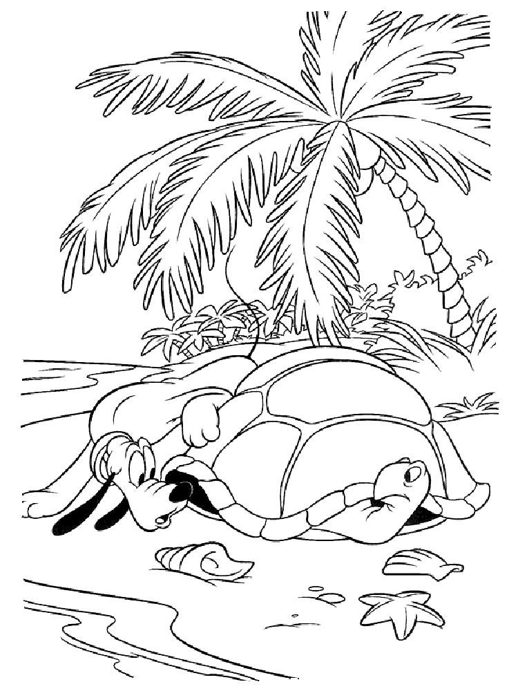 -картинки-раскраски-4 Черепаха картинки раскраски (4)