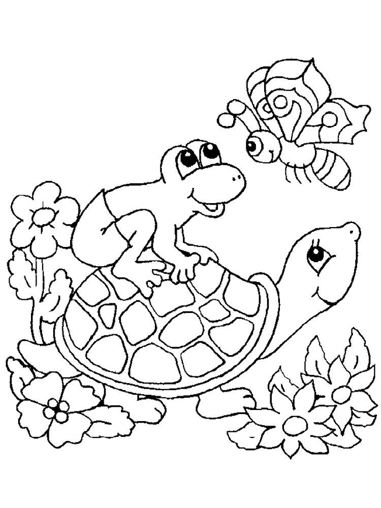 Черепаха картинки раскраски (9)