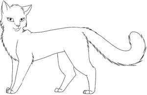 Коты воители картинки раскраски 6