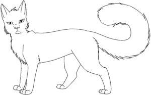 Коты воители картинки раскраски 7