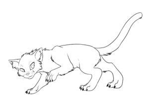 Коты воители картинки раскраски 9
