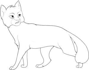 Коты воители картинки раскраски 10