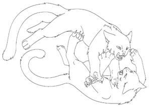 Коты воители картинки раскраски 12