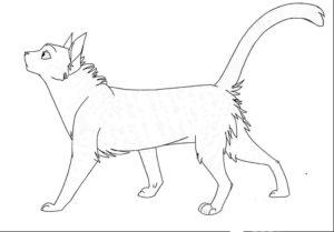 Коты воители картинки раскраски 15
