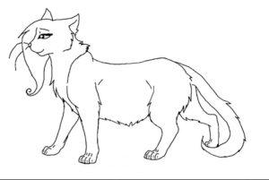 Коты воители картинки раскраски 22