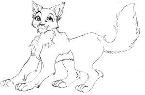 Коты воители картинки раскраски 26