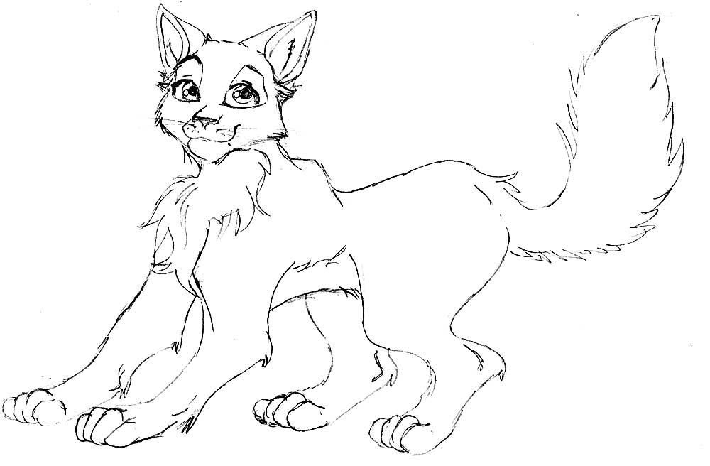 Картинки коты воители раскраска