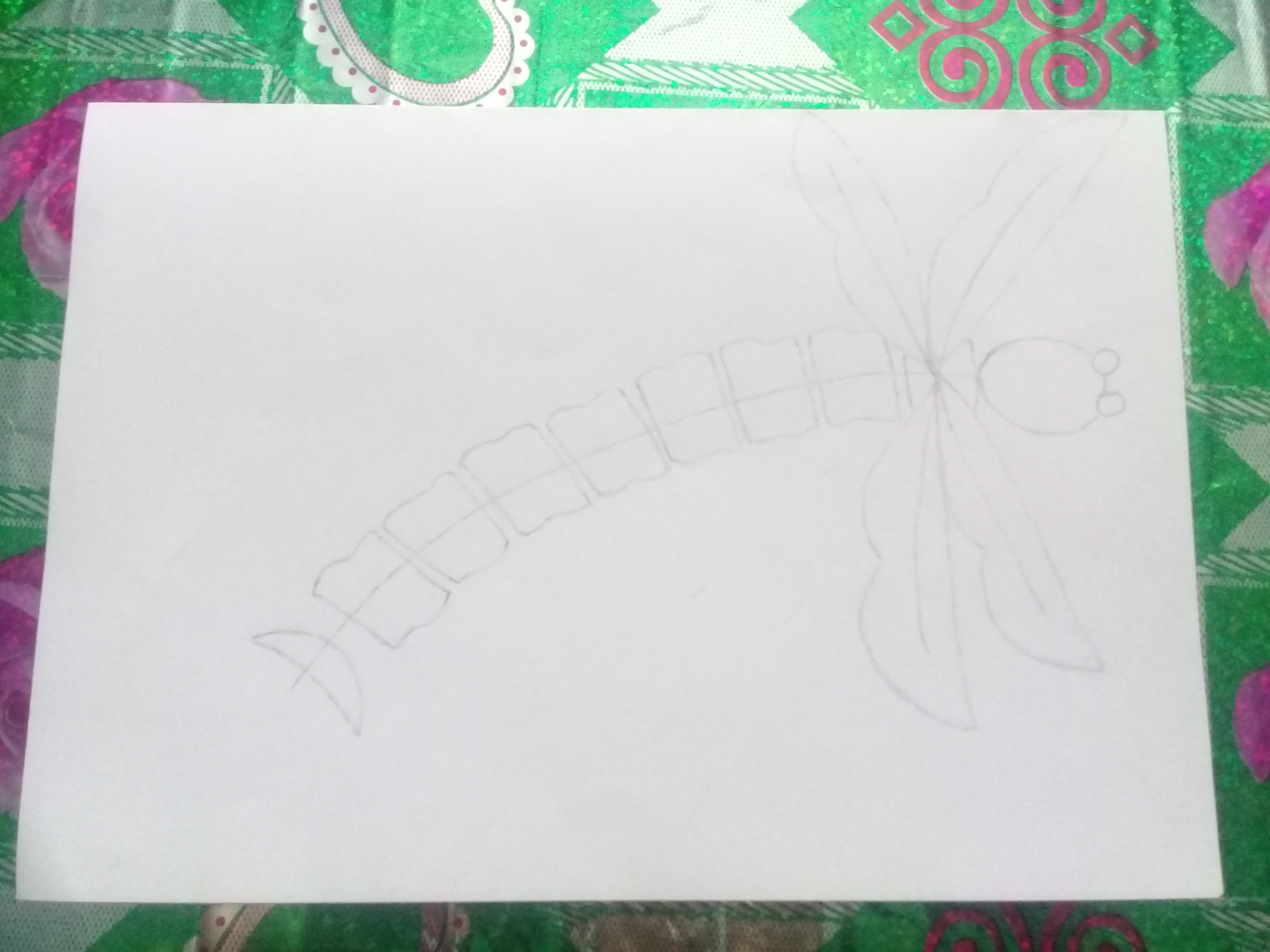Как нарисовать стрекозу поэтапно